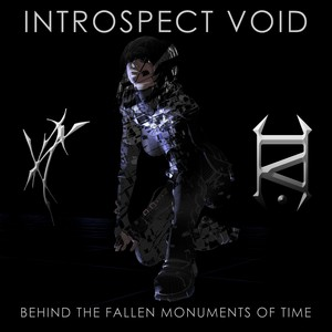 Cover INTROSPECT VOID