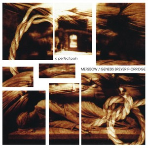 Cover MERZBOW/GENESIS BREYER P-ORRIDGE