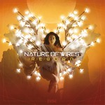 NATURE OF WIRES