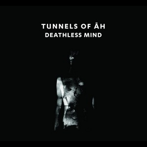Cover TUNNELS OF AH